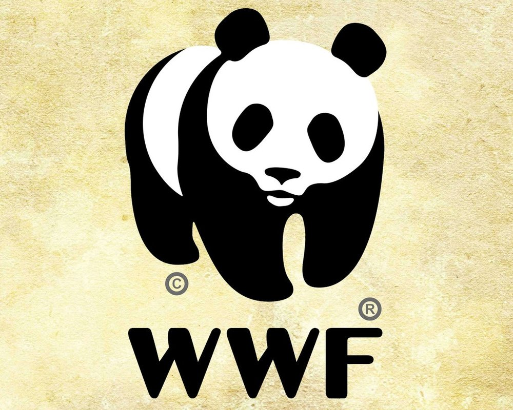 World+Wildlife+Fund.jpg