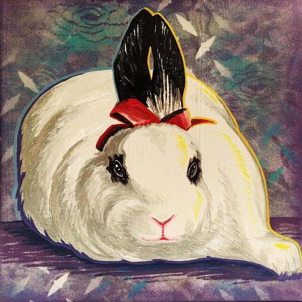 daisy the bunny.JPG