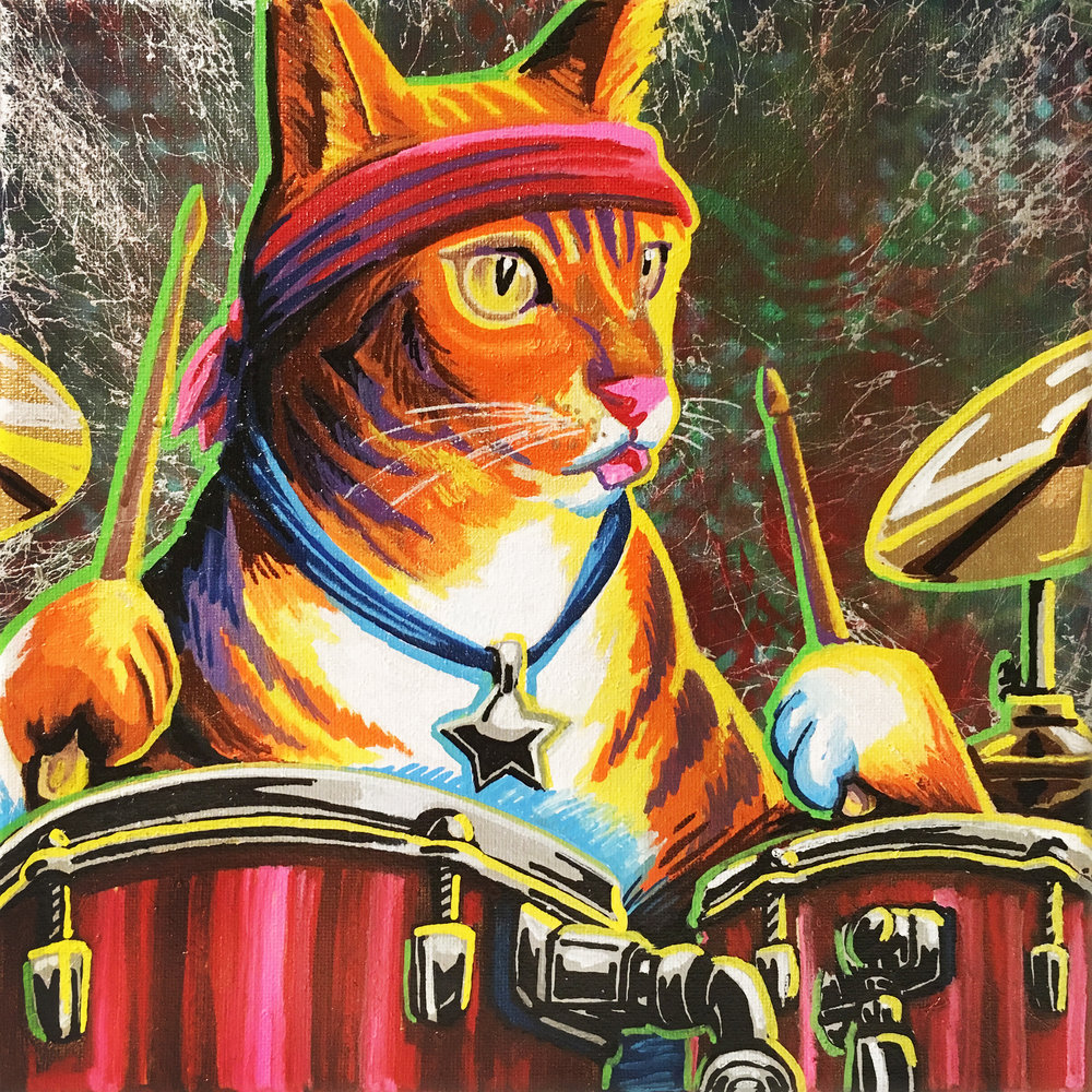 pet band drums.jpg
