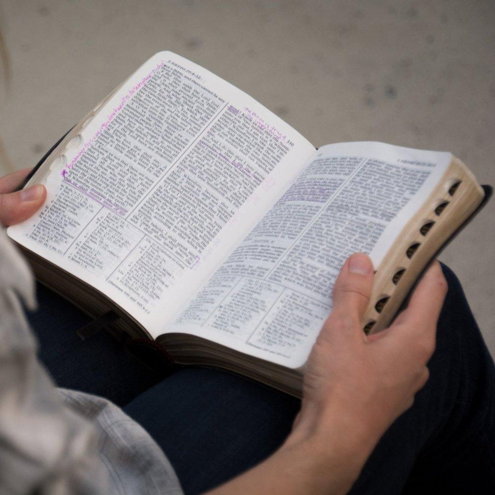 - Bible Study