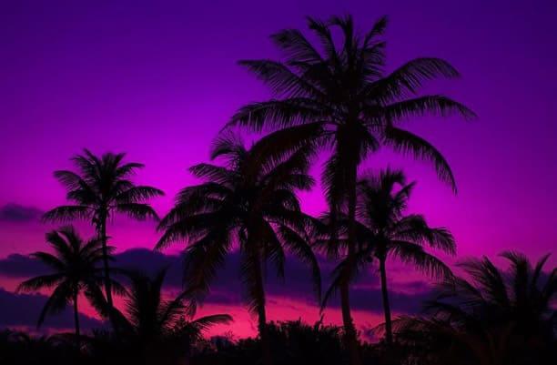 suite-dreams-key-west-sunset.jpg