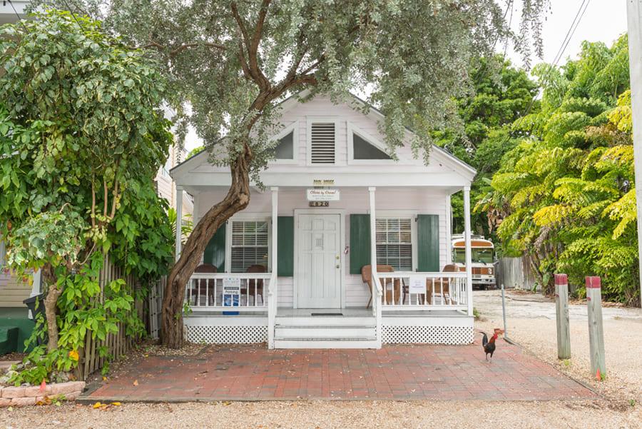 Olivia-by-Duval-Key-West.jpg
