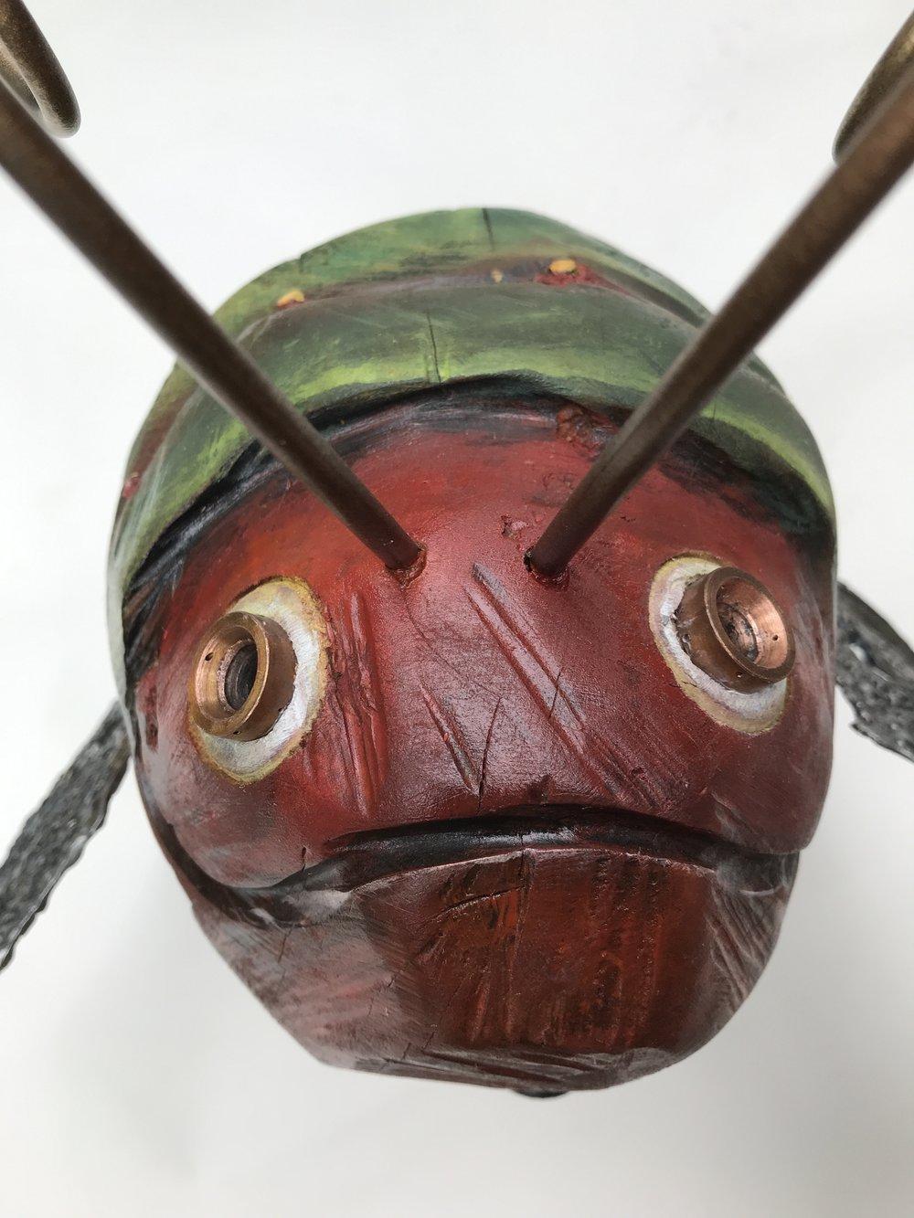 Collins bug -07.JPG