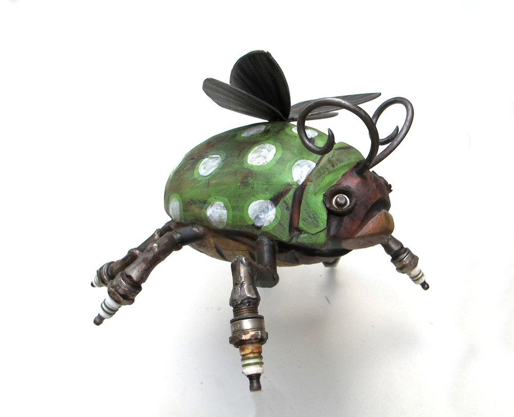Spotted Spark-bug-01.jpg