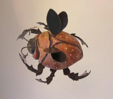 orangebeetle1.jpg