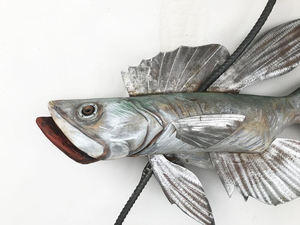 Silverfish2018-03.JPG