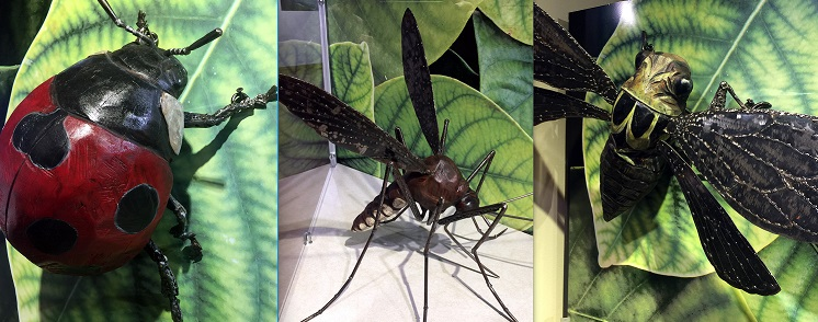 lafayette science MUSEUM February 2018 - Kelly has created eight, spectacular new life-like bug sculptures for the Lafayette Science Museum's Crawl Space entomology exhibit. The sculptures are part of the museum's permanent collection. Lafayette Science Museum: 433 Jefferson Street, Lafayette.
