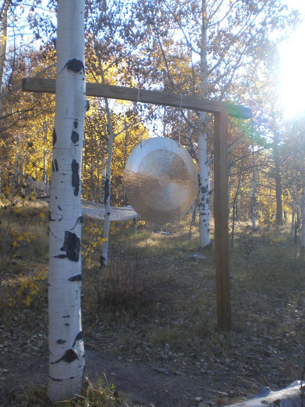 Gong in woods.JPG
