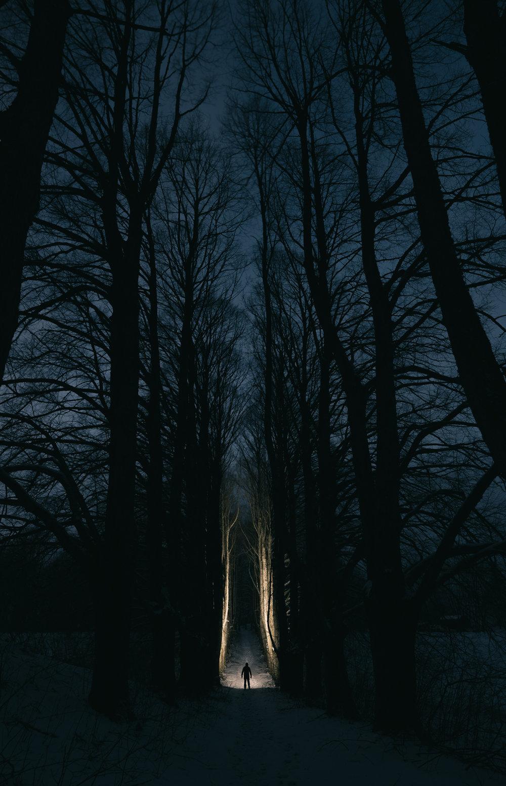 NIGHT - IN LATVIA