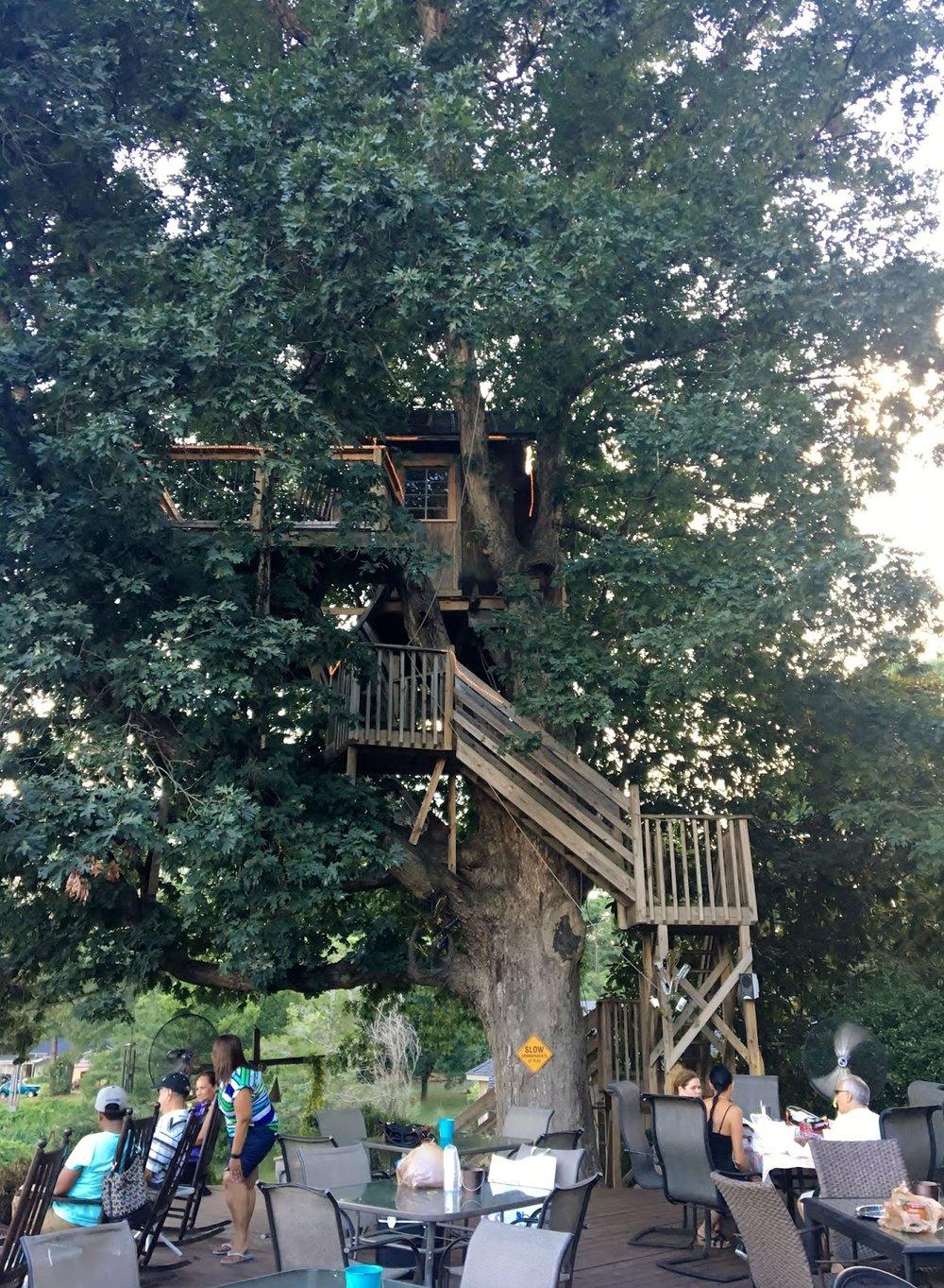 Treehouse Vineyards 1.JPG