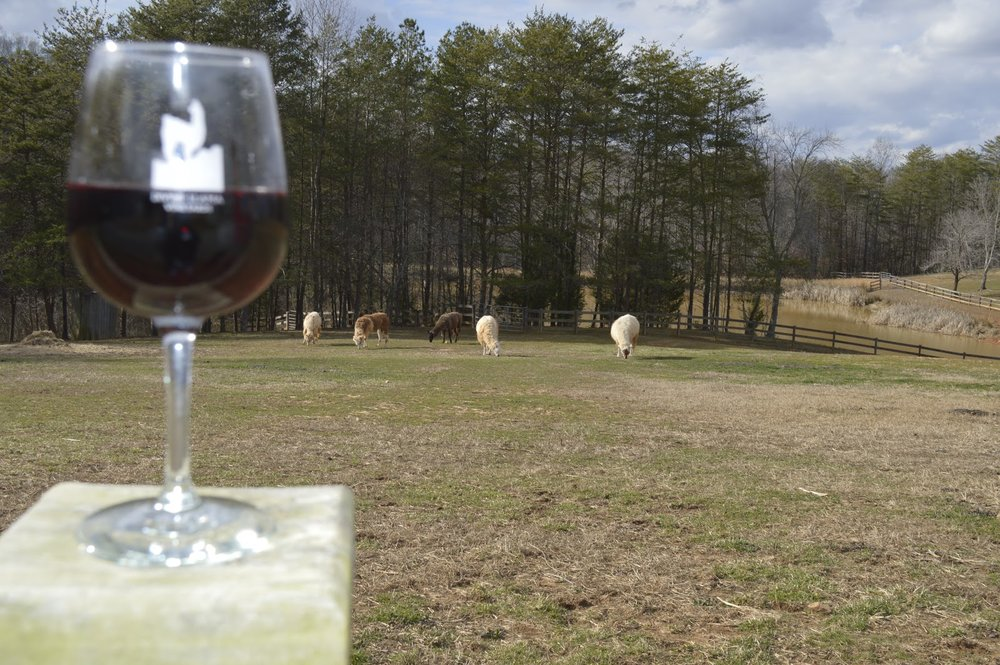 Divine Llama Vineyards, 4126 Divine Llama Ln, East Bend, NC 27018