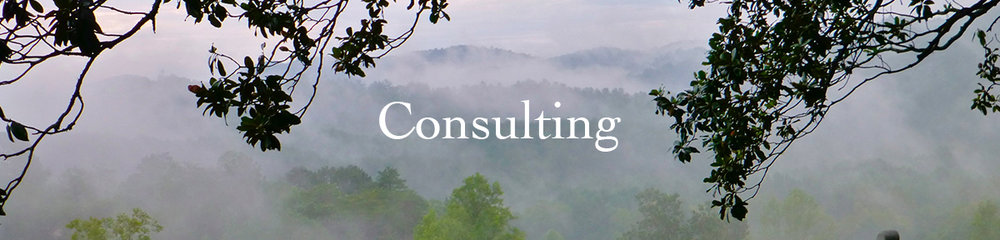 PageHeaders-Consulting.jpg