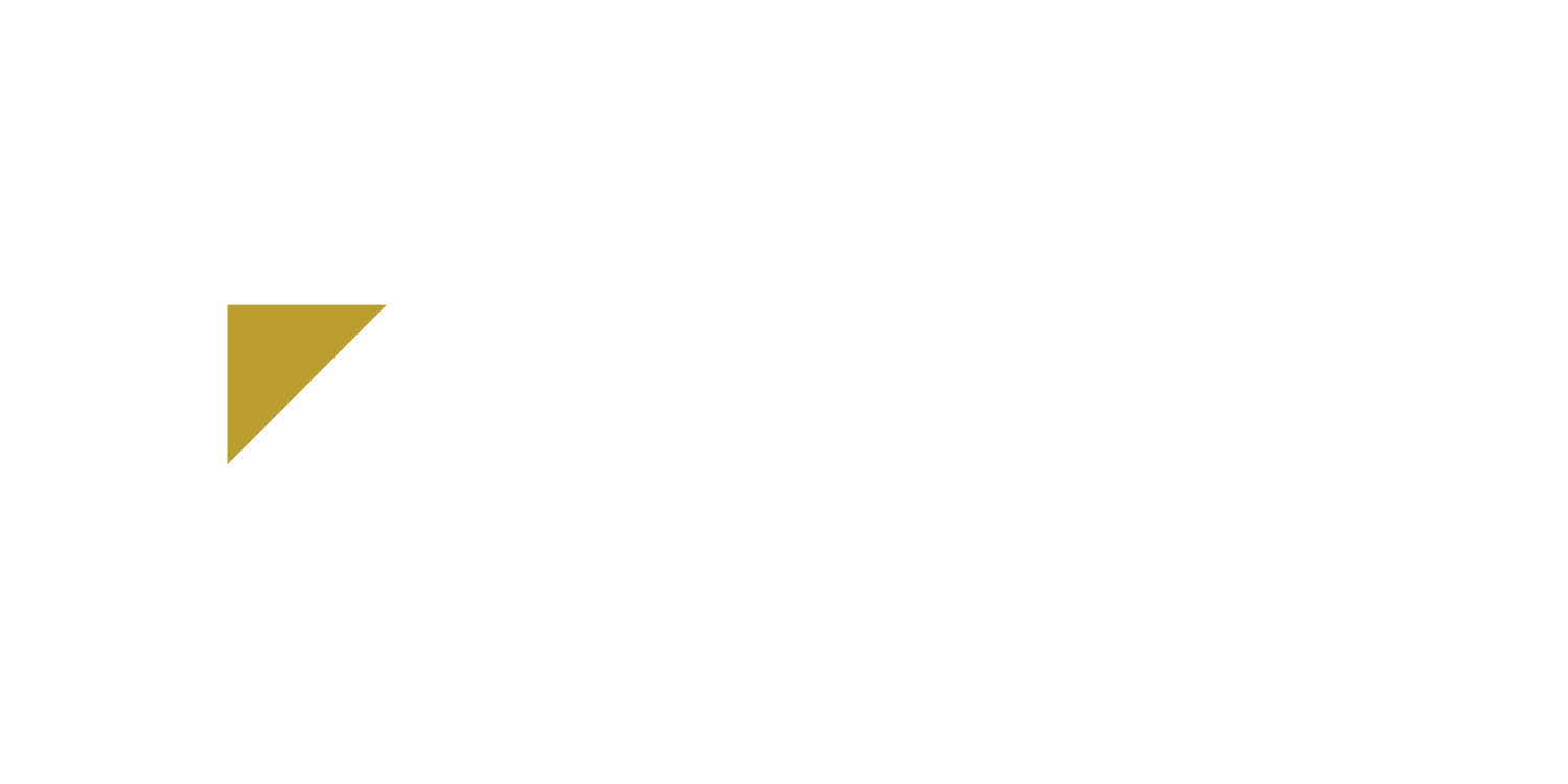 Adams Consulting, LLC