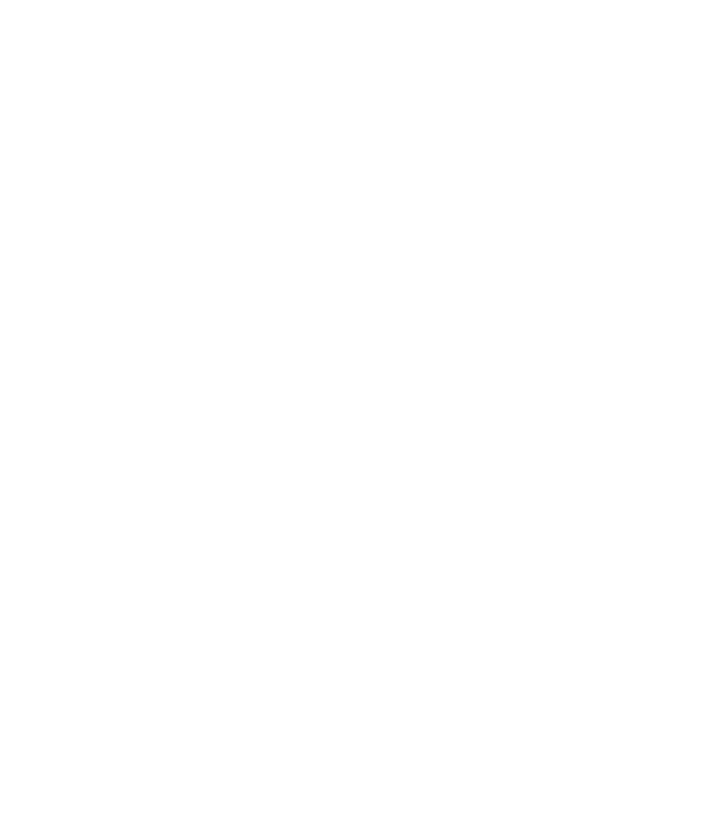 Story Collective