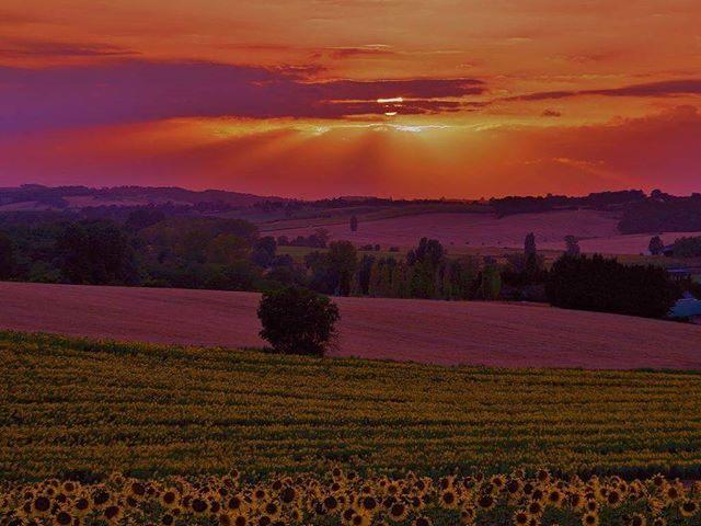Views like these never get old! Domaine de Rambeau is the perfect place to relax and unwind this summer #holidayvilla #gite #bed&breakfast #countryside #france #sunset