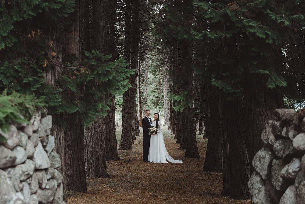 bryllupsfotografering-drobak_laavebryllup_bryllupsfotograf_weddinghotographer_©Ann-sissel-holthe_0094.jpg