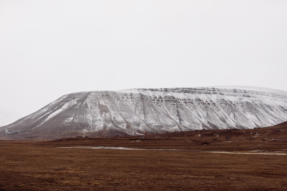 01_2018-09-23 Svalbard inviroment8497_fotograf_fatmonkeyfoto_Svalbard.jpg