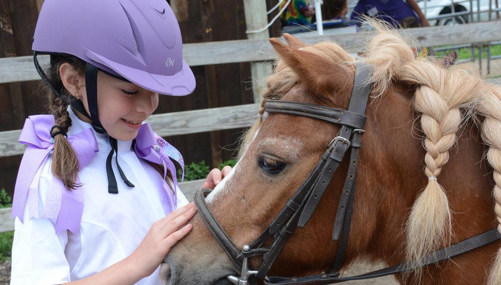 Horseback Riding and Instruction