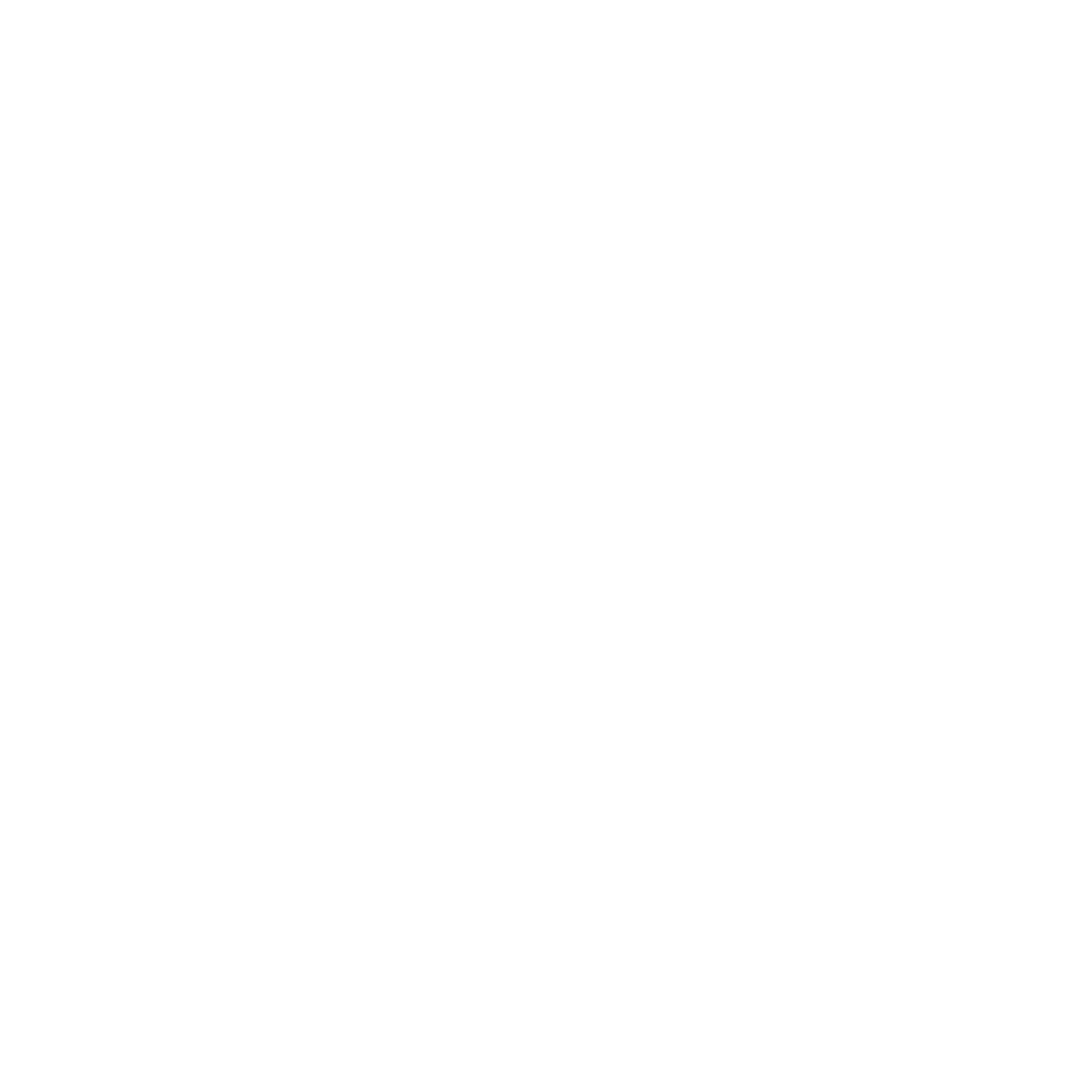 THE FREEDOM SEAL®  , TRANSPARENCY | INNOVATION | CORPORATE RESPONSIBILITY | COMPLIANCE