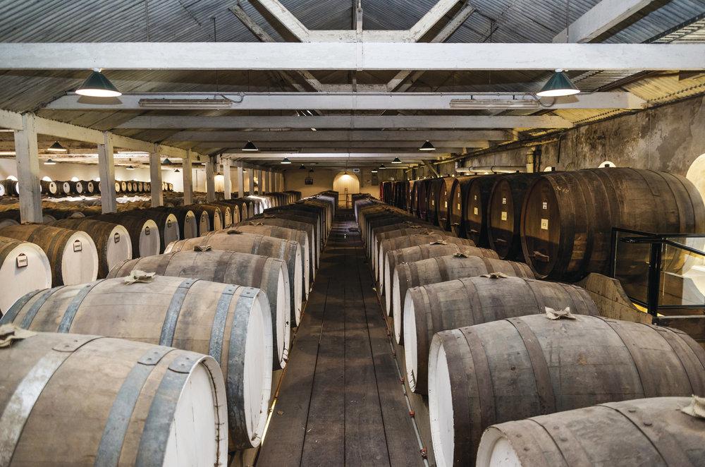 The beautiful Seppeltsfield Wine Estate