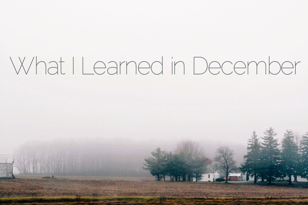 What I Learned || Sarah Writes || sarahsandel.com