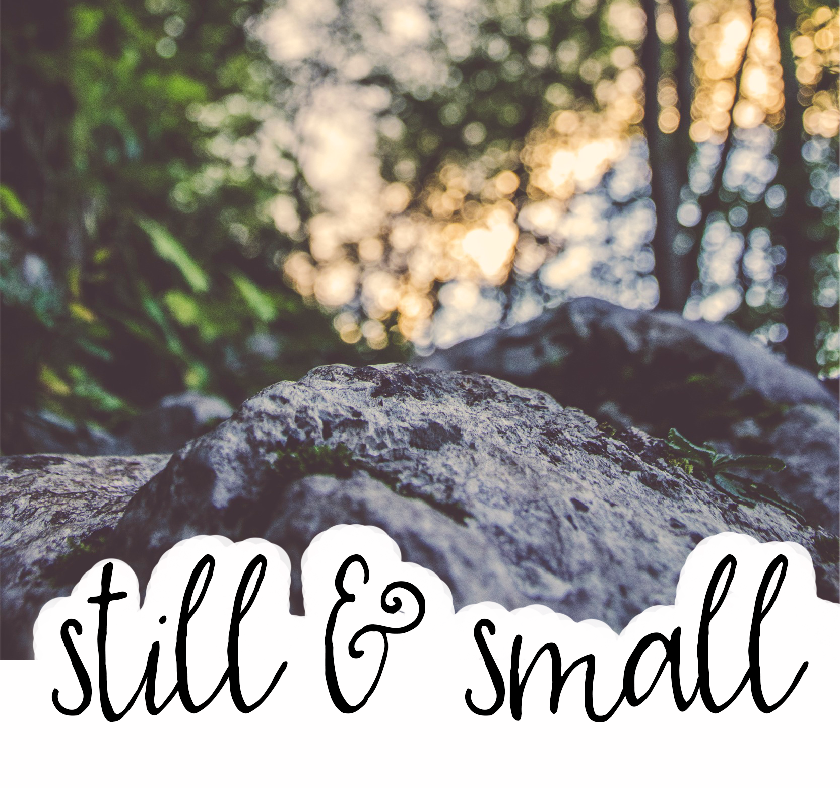 Words for the Year: still + small || sarah sandel