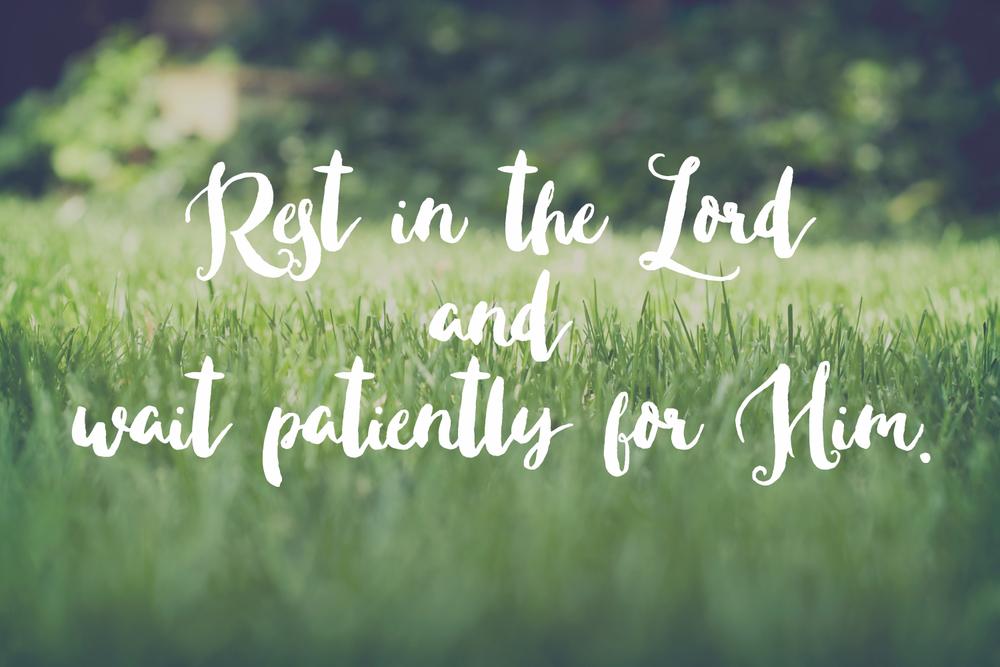 31 Days of Praying the Psalms | prayers, meditations & confession on the Psalms | sarahsandel.com | Psalm 37