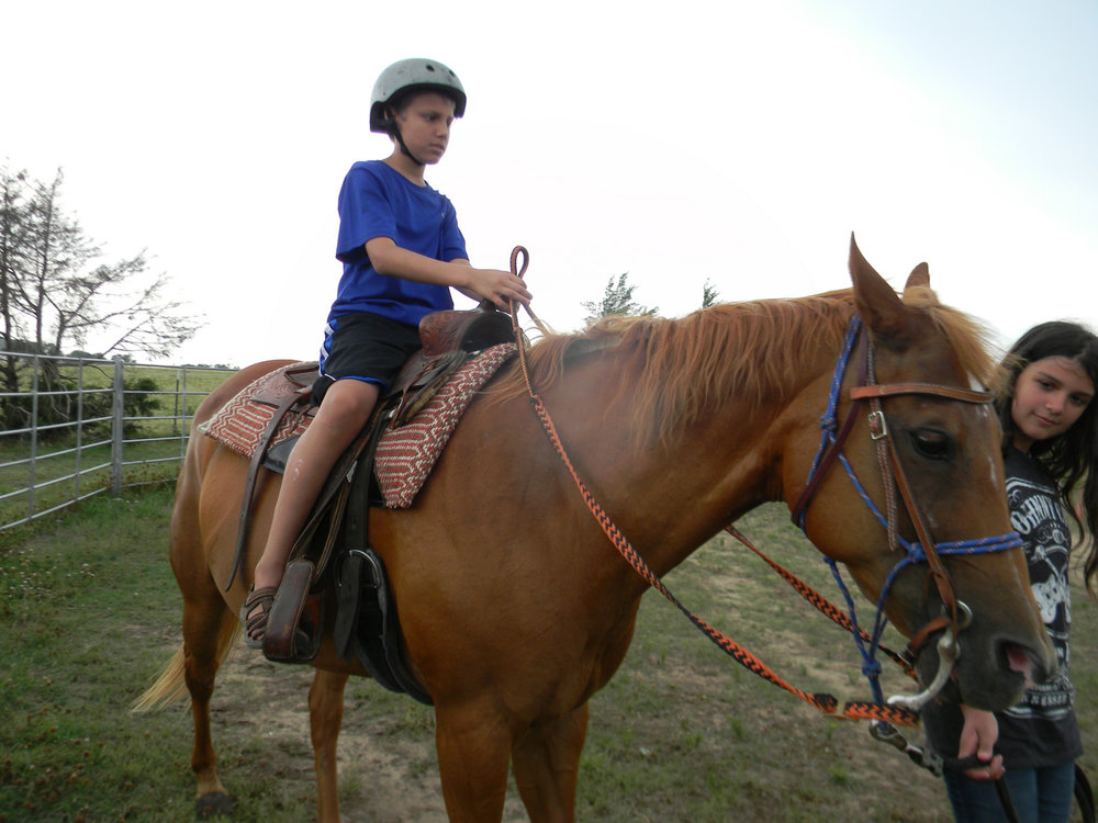 horsemanship day camp cover.jpg