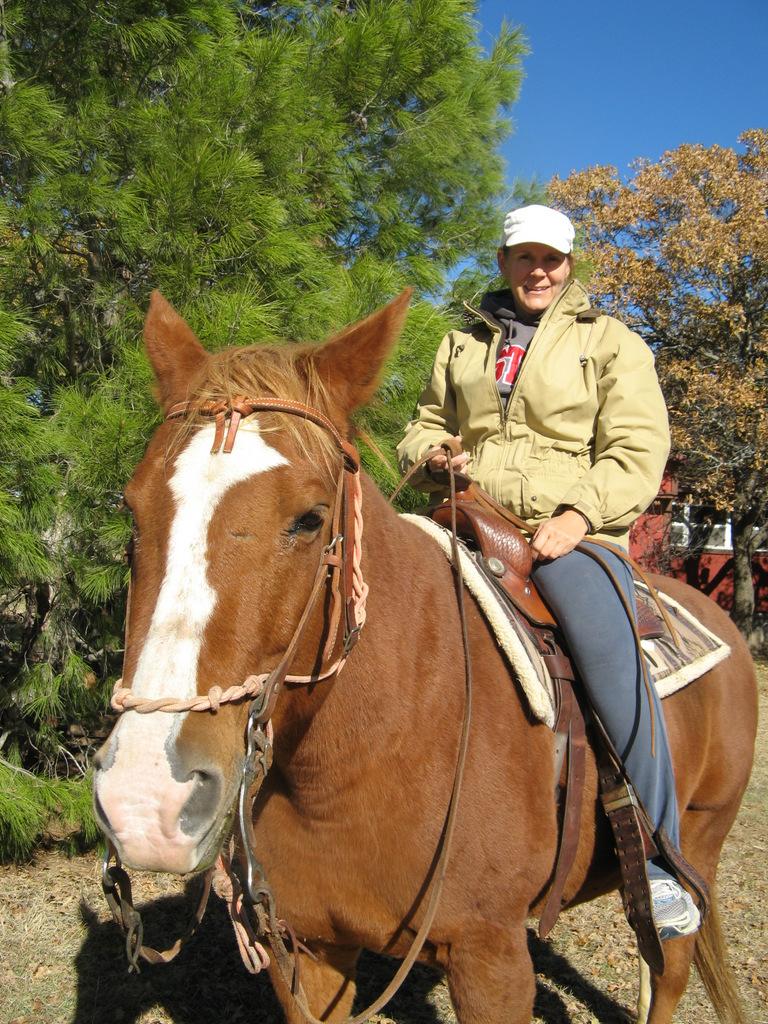 horse lease.jpg