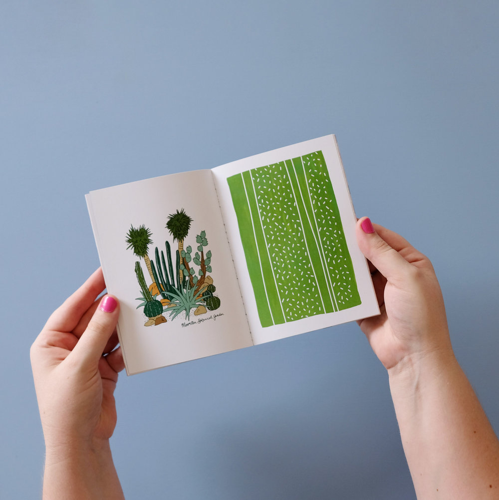 PSL_cactus.jpg