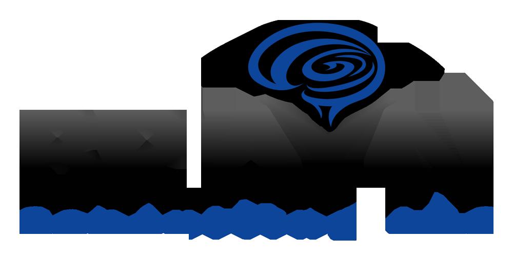 BRAYN Logo PNG.png