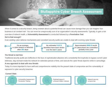 BluSapphire Cyber Breach Assessment