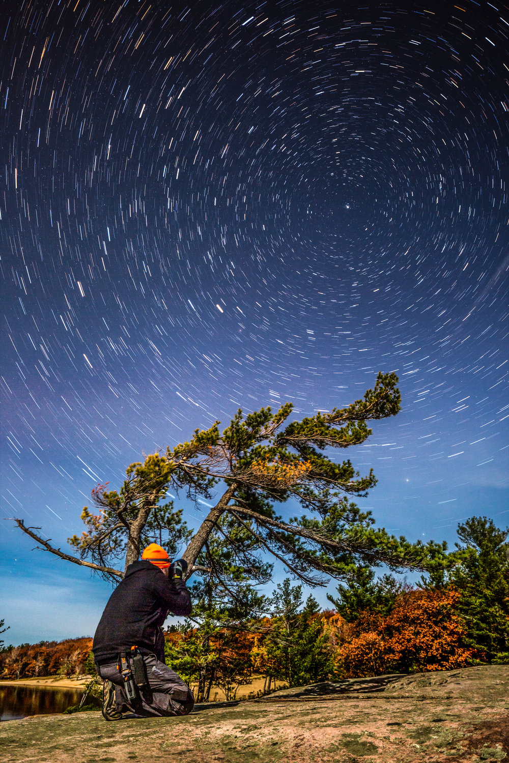 Killbear Tree Star Trails-.jpg