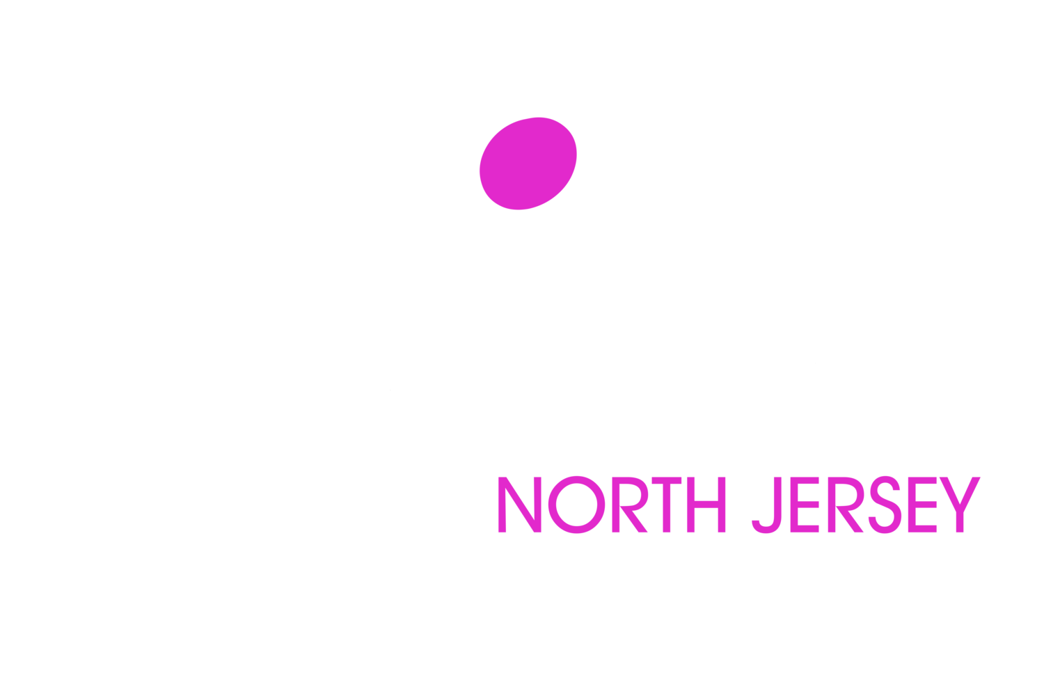North Jersey Entertainment | North Jersey DJs | Morris County DJs