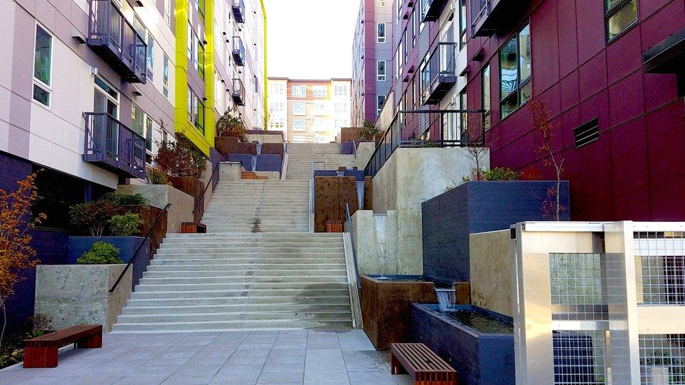 westlake_steps_01_original.jpg