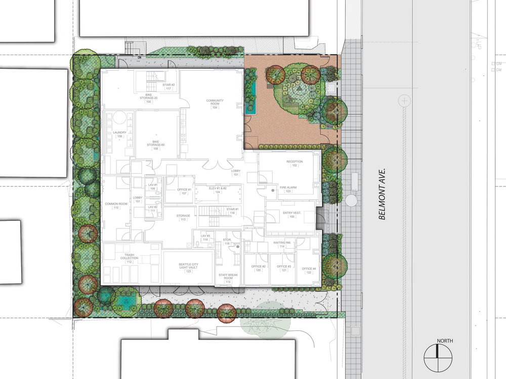 17-005_PHS Belmont_MUP landscape plan-01.jpg