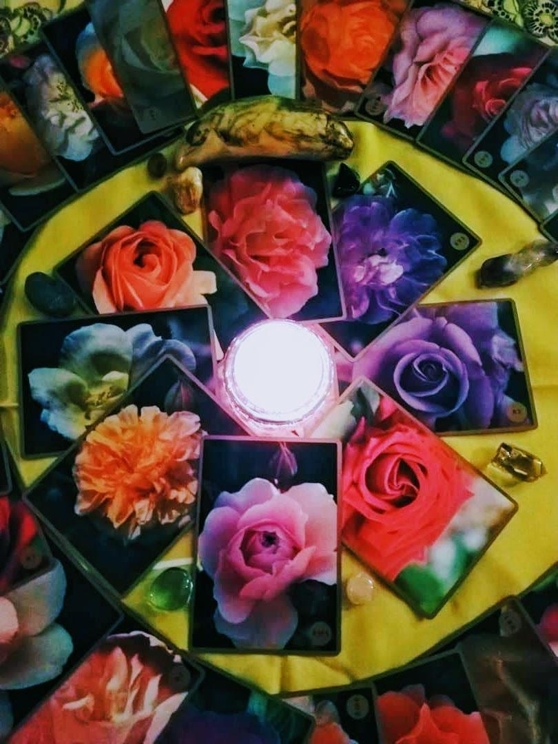 Rose Alchemy reading