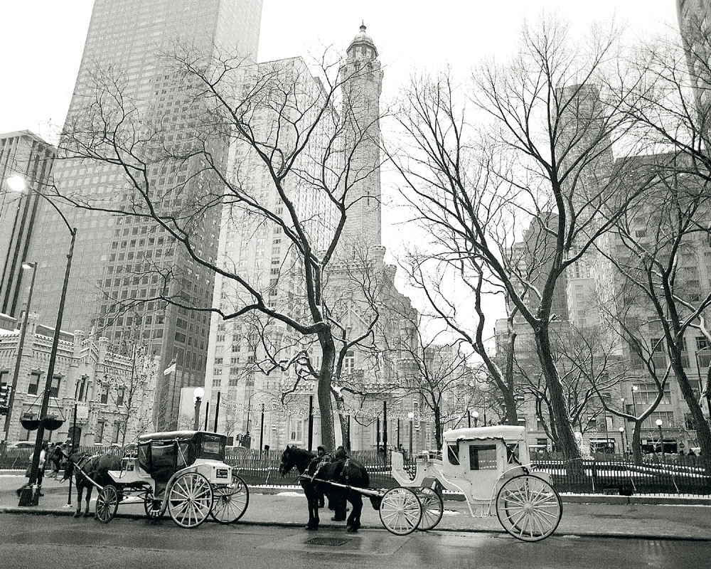 Water Tower Chicago With Horse Carriage Black White Chicago