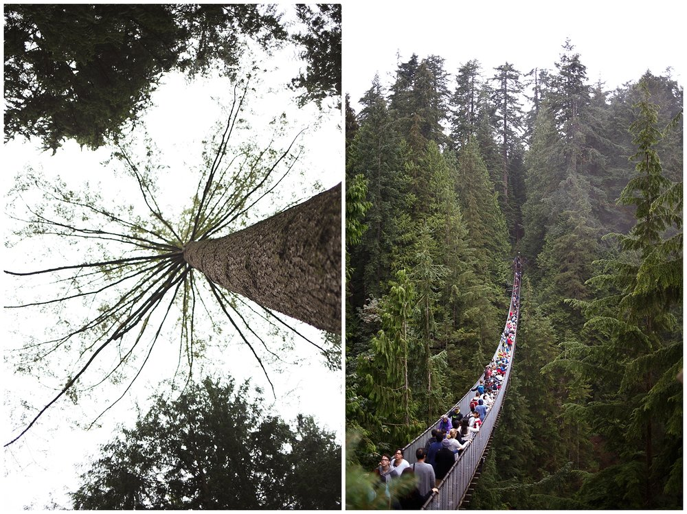 We went to visit Vancouver's rainforest at the Capilano Suspension Bridge park