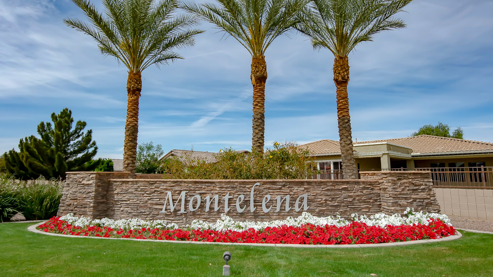 Montelena | Queen Creek