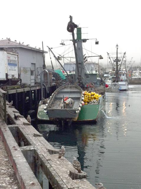 wharf2-monterey-bay-alliance-fisheries.JPG