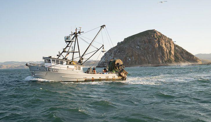 trawler-south-morro-acsf.jpg