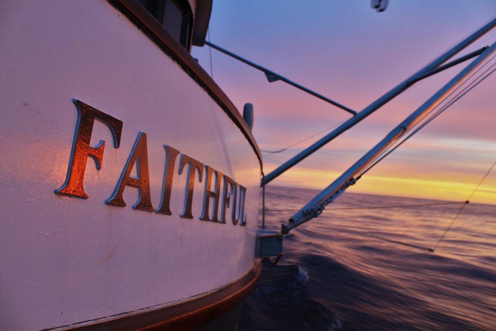 faithful_closeup_sunset.jpg