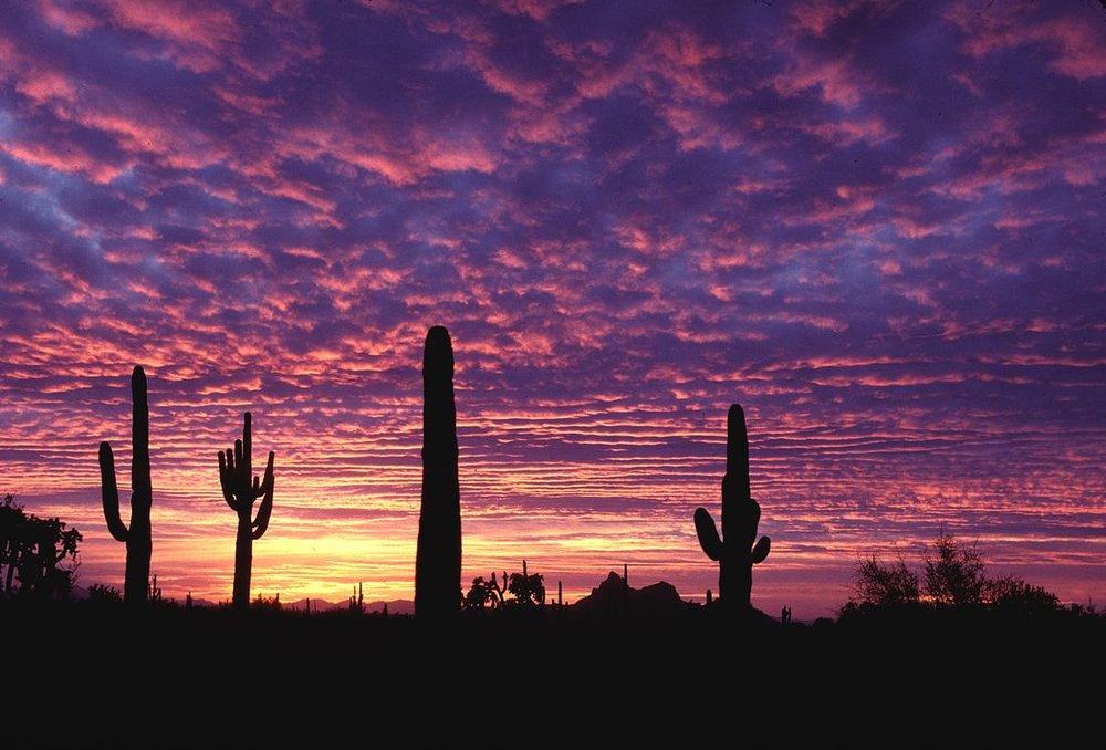 lovely-arizona-sunset-30126-30843-hd-wallpapers.jpg