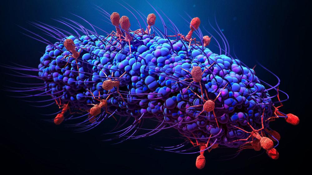 Bacteriophages_2880x1620-2880x1620.jpg