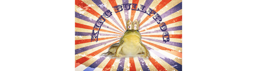 King Bullfrog About Banner.jpg