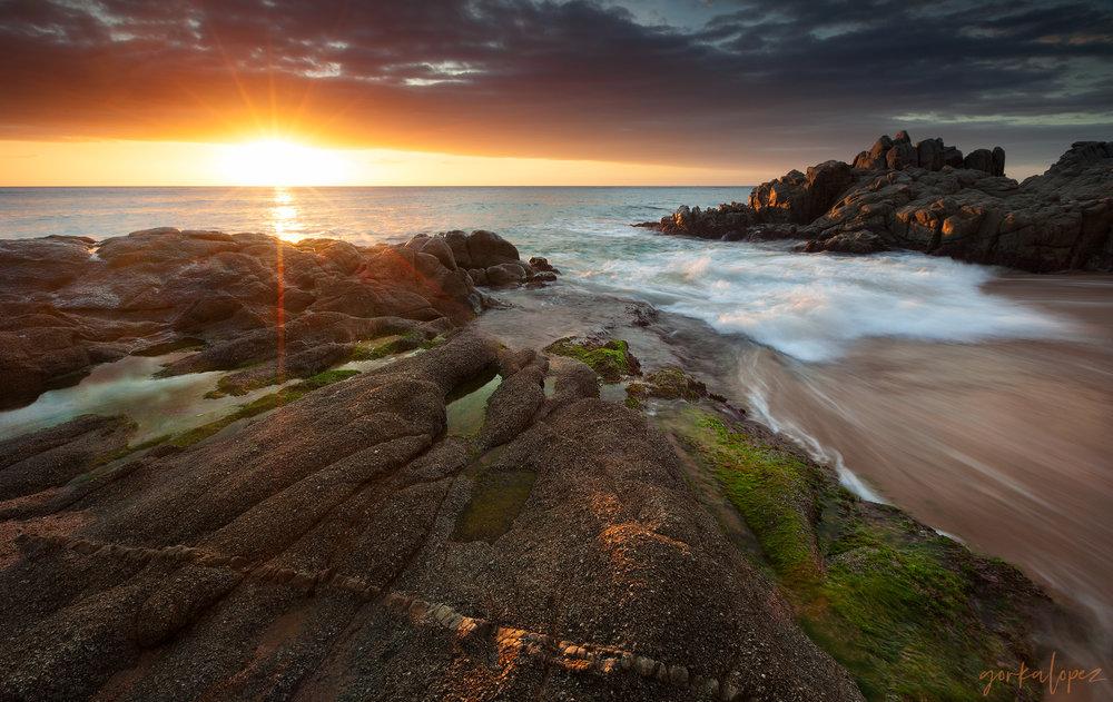 Coastal -