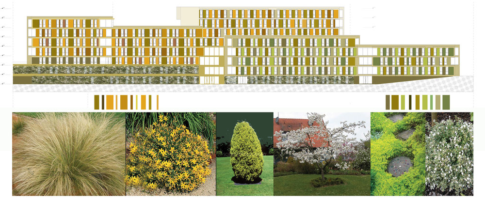 OZU student residence_FACADE COLOR PALETTE ELEVATION.jpg