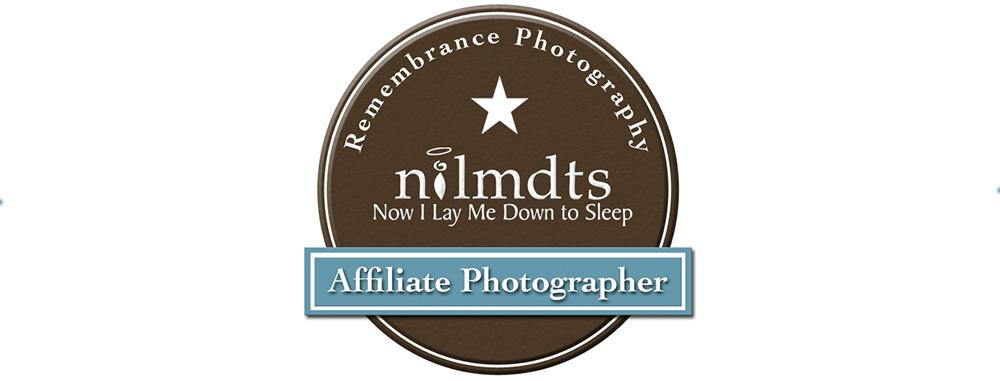 NILMDTS.jpg