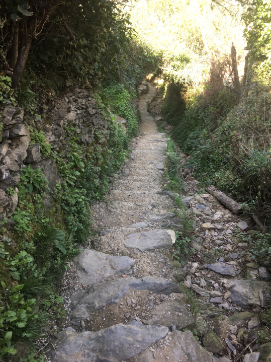 vena-monto-more-stairs-down.jpg